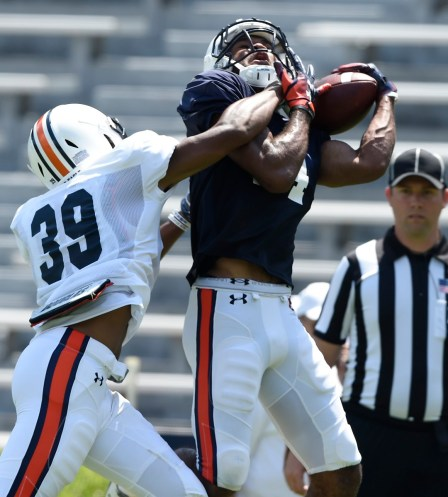 Receiver Zach Farrer makes a catch defended by Chris Bobo. (Todd Van Emst/AU Athletics)
