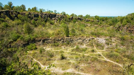 The basin of the limestone quarry at Ruffner Mountain. (Dennis Washington / Alabama NewsCenter)