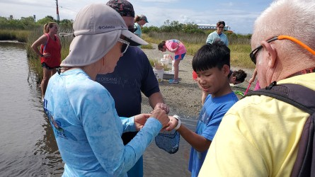 Participants explored Dauphin Island's marine habitats including Mobile Bay, the salt marsh and the beach by boat, bus and walking. (contributed)