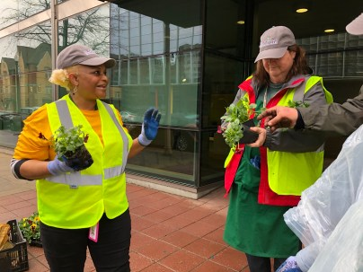 Enthusiastic volunteers plant flowers to help cheer up patients and families at Children's of Alabama. (Regions Doing More Today)