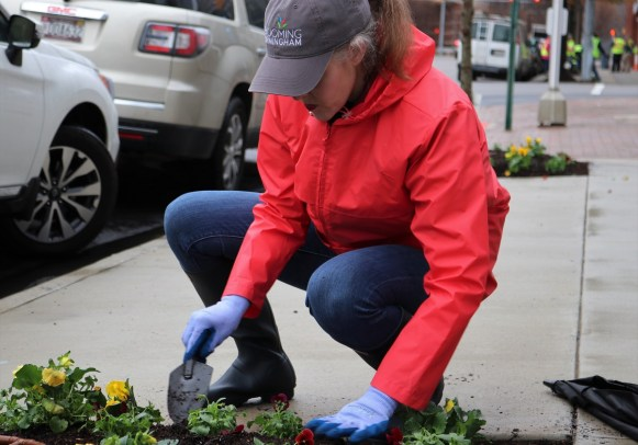 A volunteer plants flowers with Blooming Birmingham in the corridor between Children's of Alabama and Railroad Park. (Regions Doing More Today)
