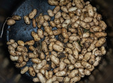 Peanuts grown by students at Jones Valley Teaching Farm. (Jones Valley Teaching Farm)