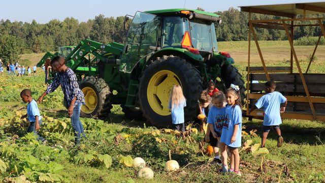 10 Must-visit Sweet Grown Alabama farms for fall fun