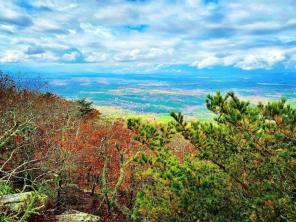 The view from Mount Cheaha showcases the great variety of colors of an Alabama fall. (Abbey Gilchrist)