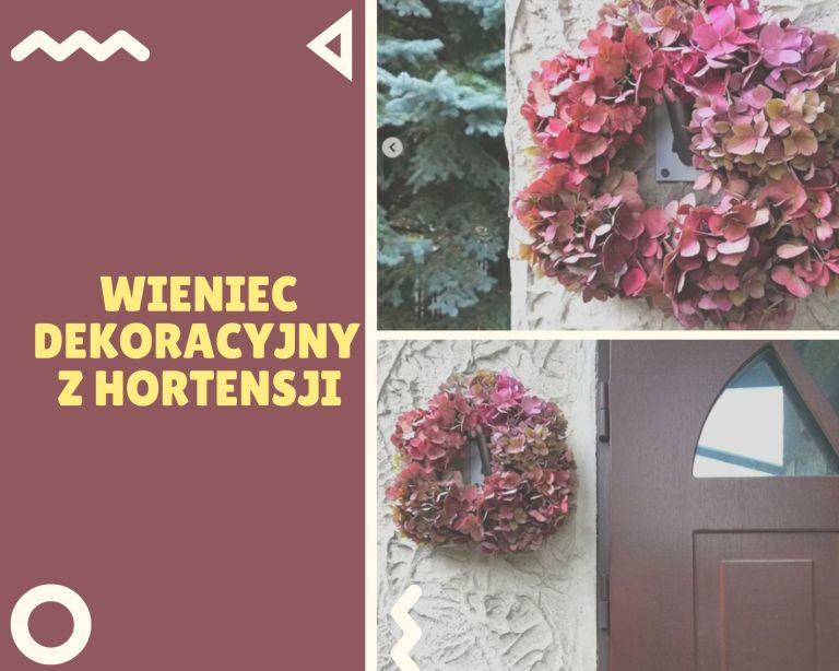 Jak zrobić wieniec na drzwi z hortensji