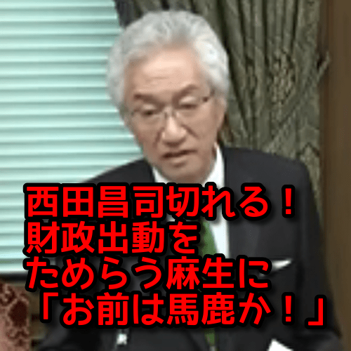 真🌸保守速報!【西田昌司】3.18 参議院財政金融委員会