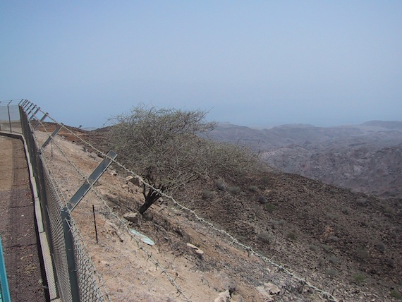 Dry, hot, barren Djibouti.
