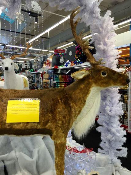 christmas shopping - 12