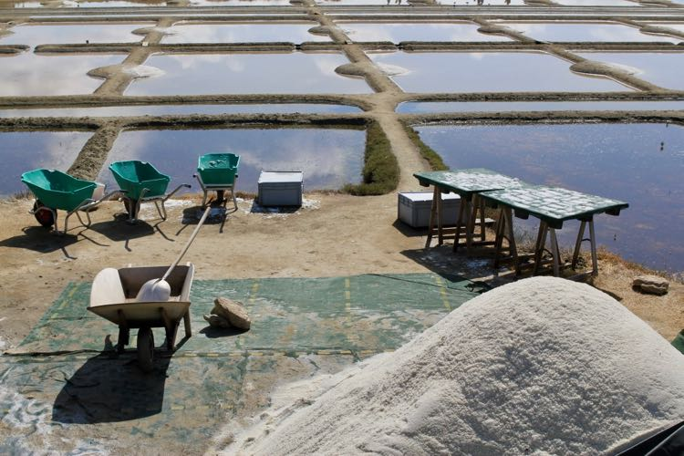 how to harvest sea salt
