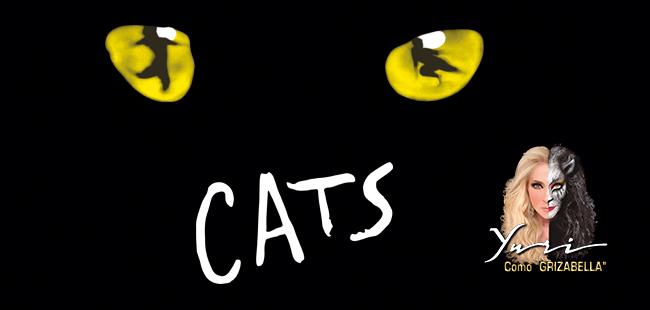 Cats el Musical / Auditorio Telmex