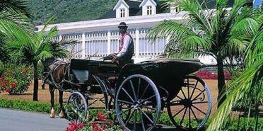 Domaine-Les-Pailles-in-Mauritius