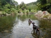Día familiar en Río Pacora