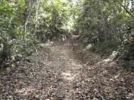 Río Indio a Corpus Cristi