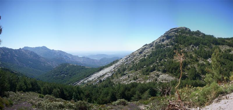 Panorama 3 (Medium)