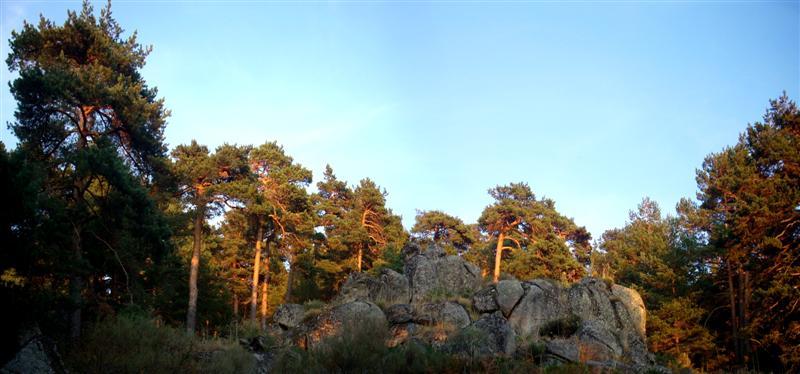Panorama 8 (Medium)