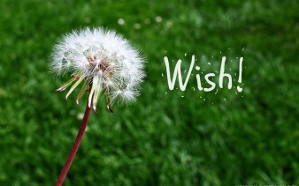 Wednesday-Wishes-unknownmami_thumb-800x500