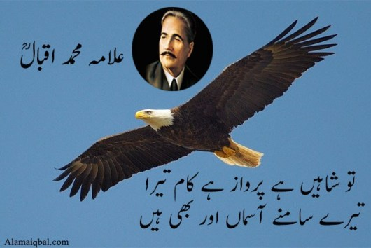 Iqbal tere shaheen poetry