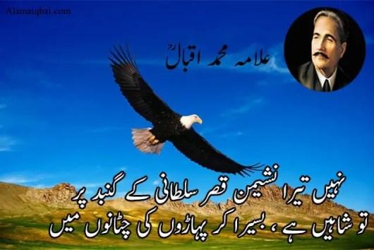 Shaheen poetry in urdu sms