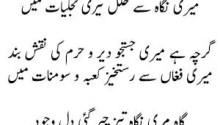 Meri Nawaay Shauq Se