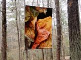 """""""Leaves after Degas."""" banner, 48x66"""