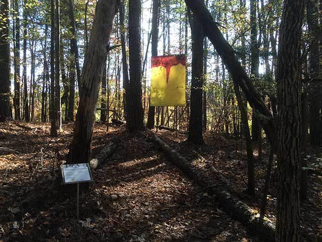 banner in woods