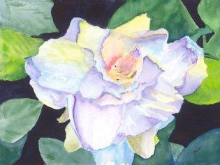 GILL_Magnificent Magnolia-640