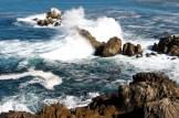 """""""California Coast"""""""