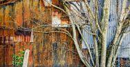 """The Barn at Ralph Lauren,"" photography"