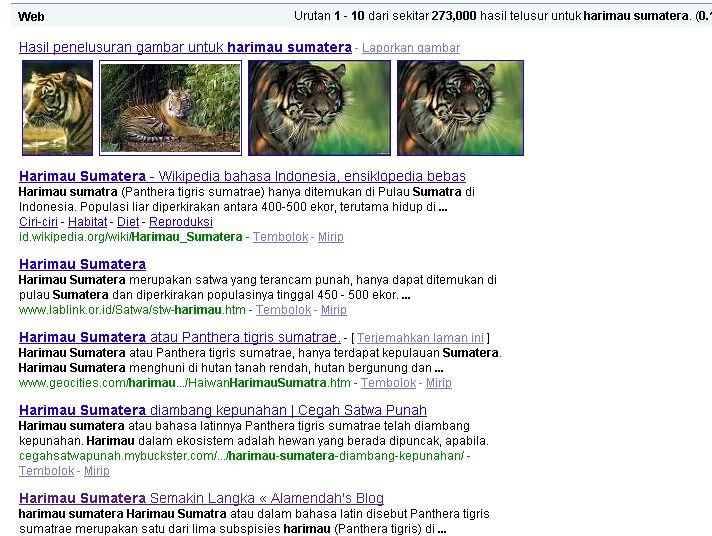 """Harimau Sumatera"" ada di nomor 5 halaman pertama google.co.id"