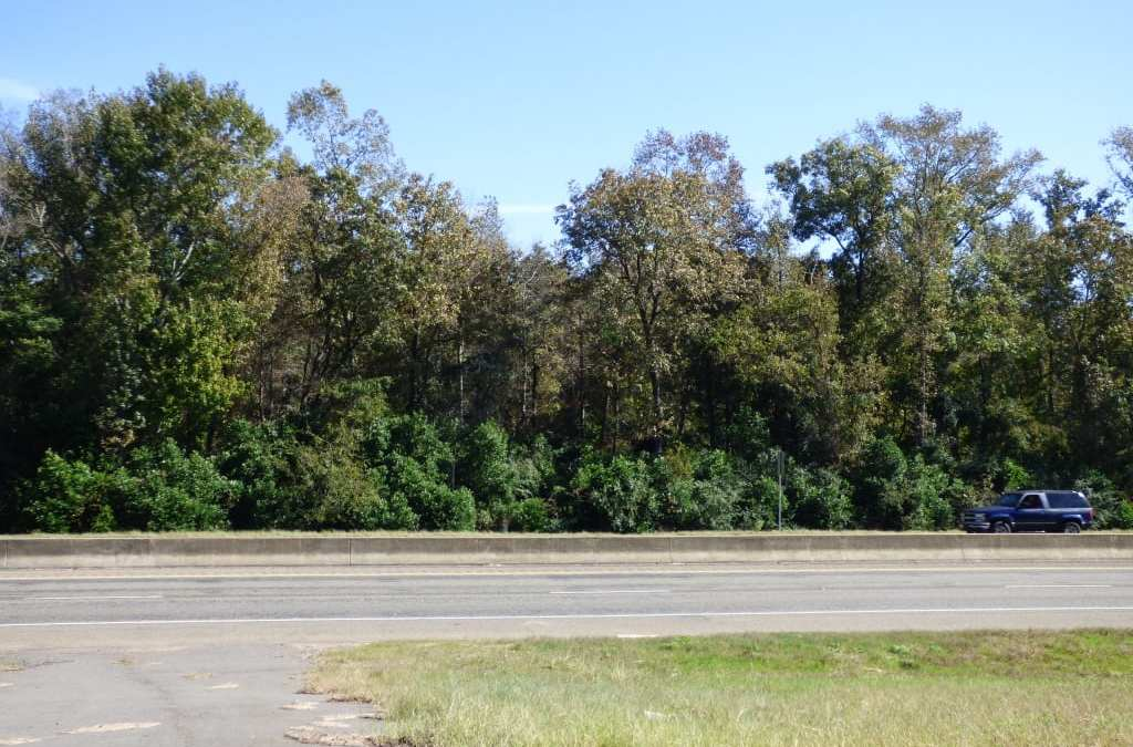 STALLINGS DR – 2.14 ACRES – $55,000 – MLS#2181001 & 2181002