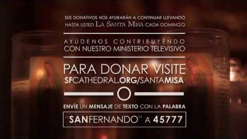 Is San Fernando Cathedral Open Today