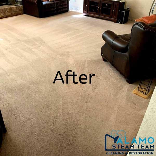 carpet cleaning service san antonio tx