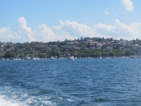 Rose Bay from the ferry