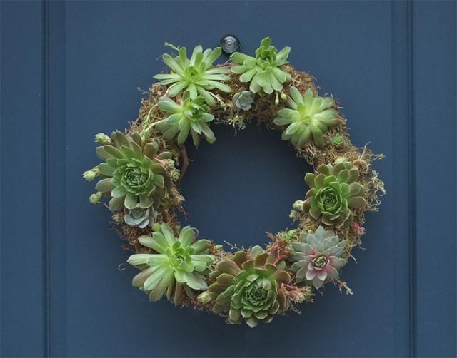 Succulent Wreath Door