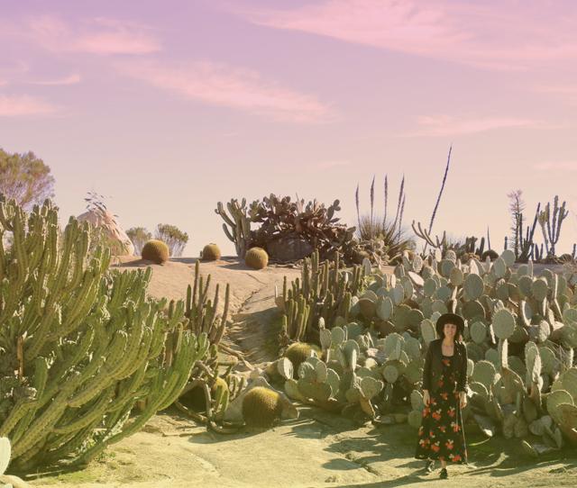SD Desert Garden