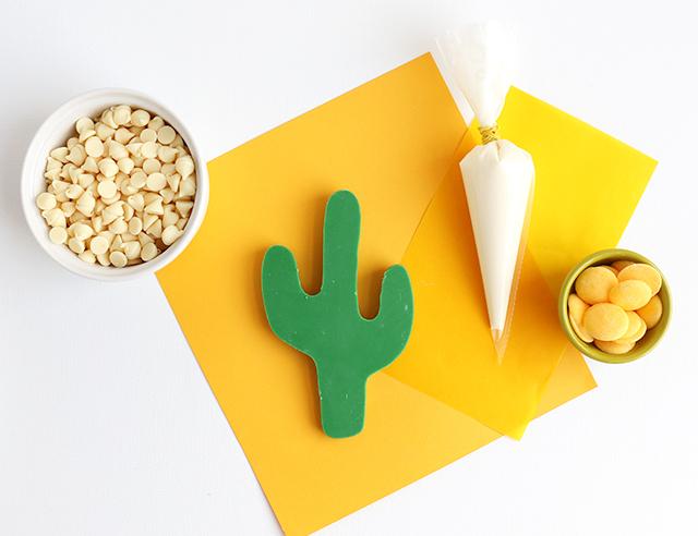 DIY Chocolate Cactus