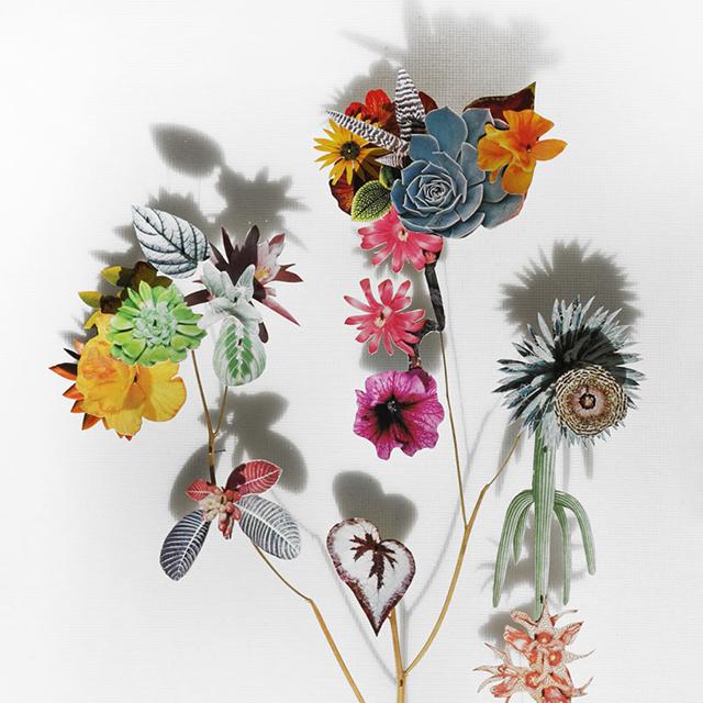 anne-ten-donkelaar-7-flower-constructions