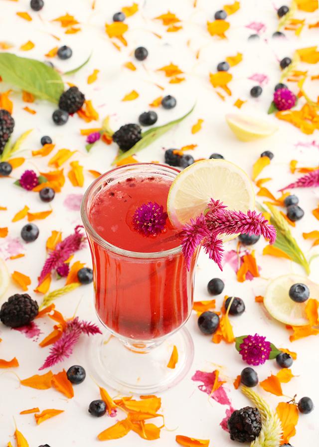 Blackberry Vodka Cocktail 1