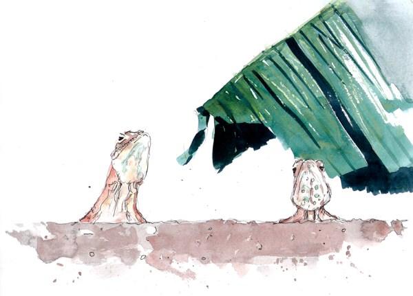 agamas watercolour