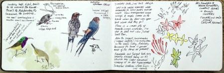 sketchbook_spread