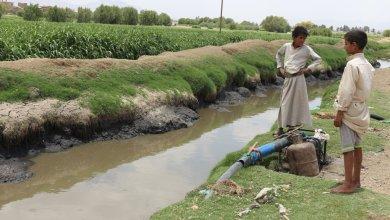 Photo of لهذا السبب .. الكوليرا مجددا يهدد حياة الآلاف اليمنيين