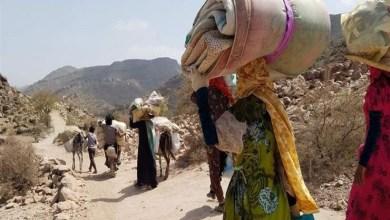 Photo of الهجرة الدولية :ربع مليون يمني نزحوا من بعد توقيع اتفاقية ستوكهولم