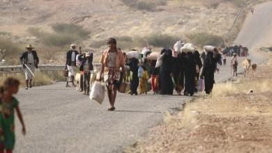 Photo of الأمم المتحدة : أكثر من 274 ألف نازح في اليمن، منذ بداية هذا العام