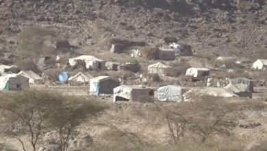 Photo of محلي صنعاء يوجه نداء إنساني لإغاثة نازحي نهم في مأرب