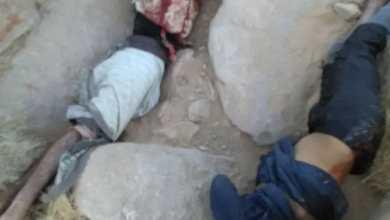 Photo of بالأسماء : إحصائية عسكرية تؤكد مصرع أكثر من 800 حوثياً في جبهات نهم والجوف خلال أقل من شهر