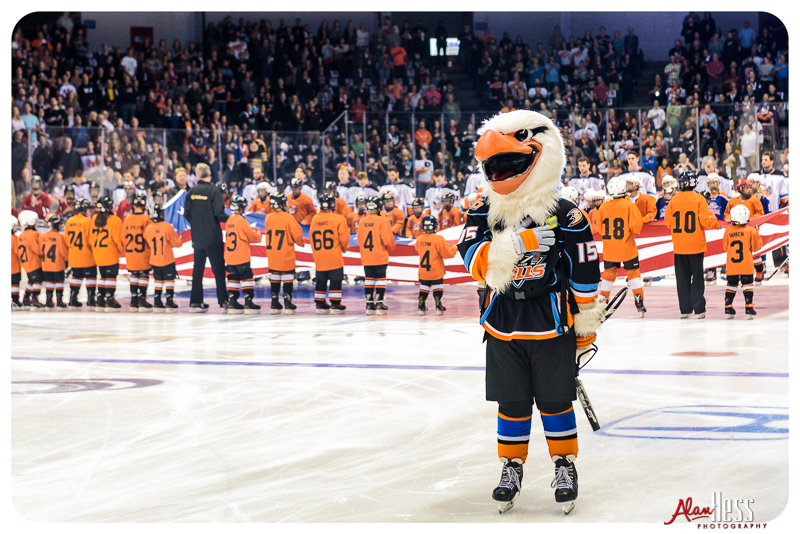 San Diego Gulls vs Tucson Roadrunners on October 14, 2106 at the Valley View Casino Center in San Diego, California. (Photo by Alan Hess)