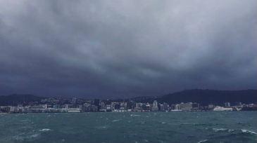 wellington-weather