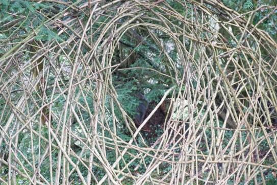 A den we found exploring in Ilam Park, Derbyshire!