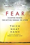 Fear (Best Buddhist Books for Beginners)
