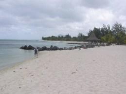 Heavily altered beachlines